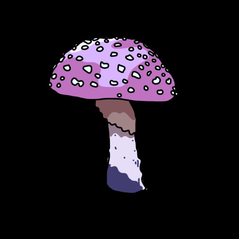 キノコ(毒)パープル