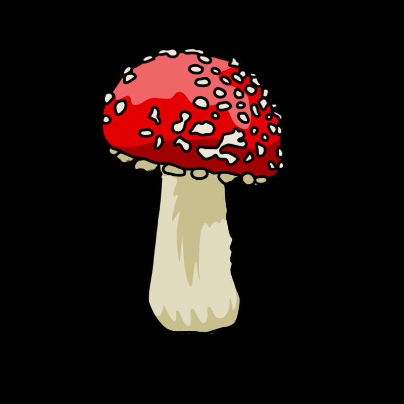 キノコ(毒)赤