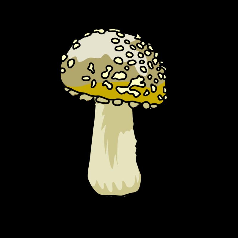 キノコ(毒)ゴールド