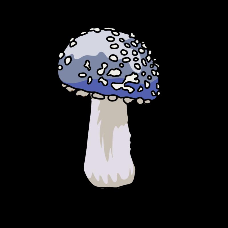 キノコ(毒)青
