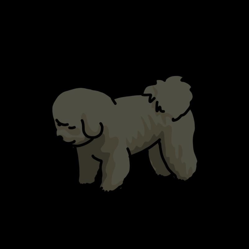 考え込む犬(ビションフリーゼ)黒