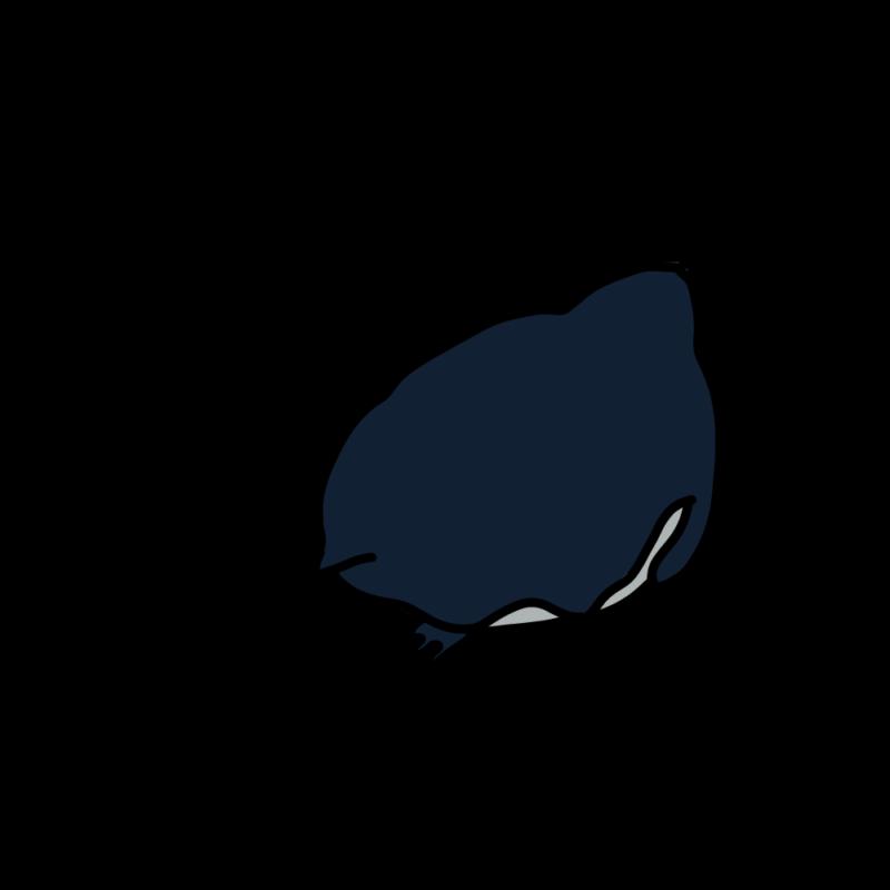 ほふく前進するペンギンノーマル