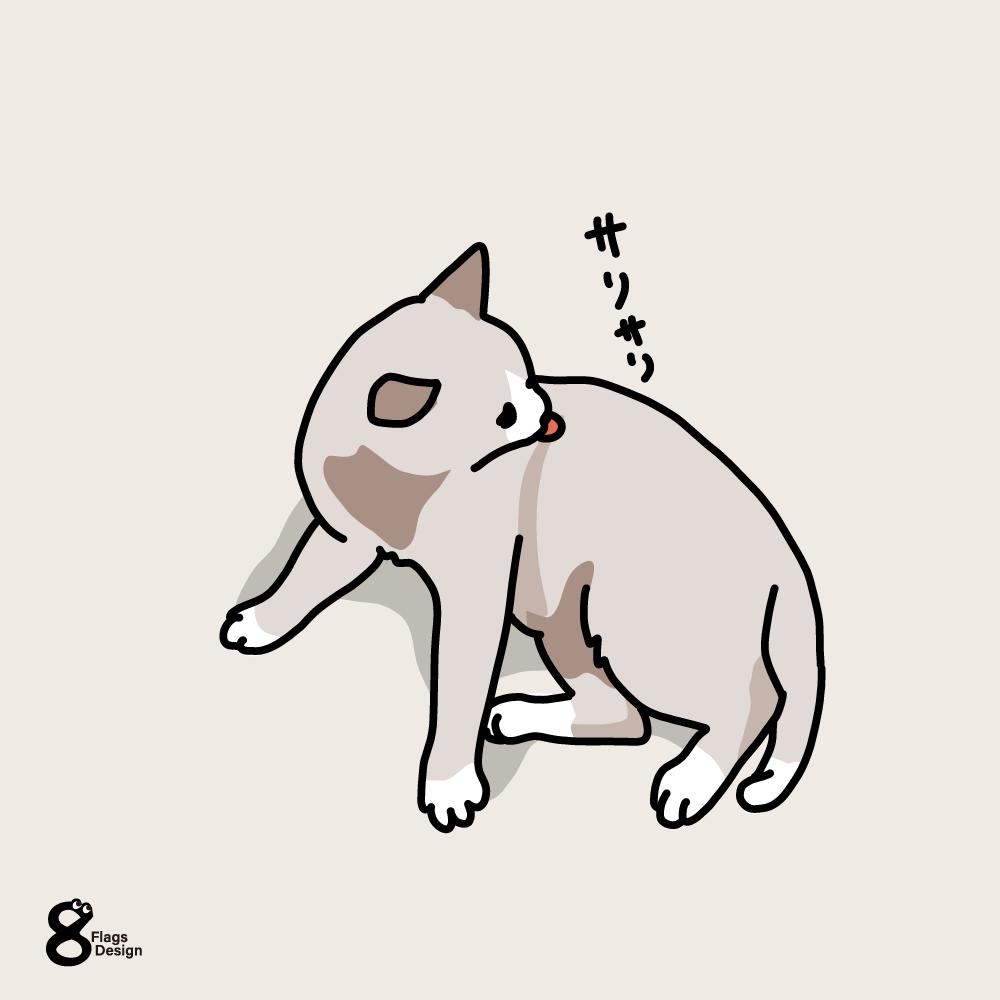 毛づくろいするネコのキャッチ画像