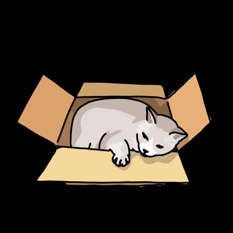 箱ネコクリーム