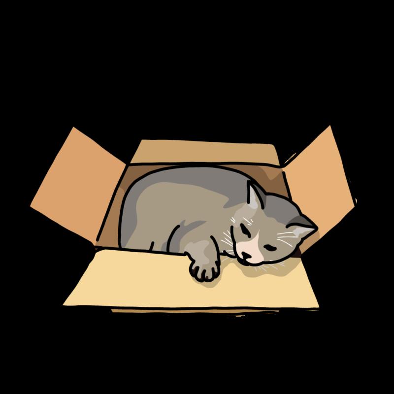 箱ネコグレー