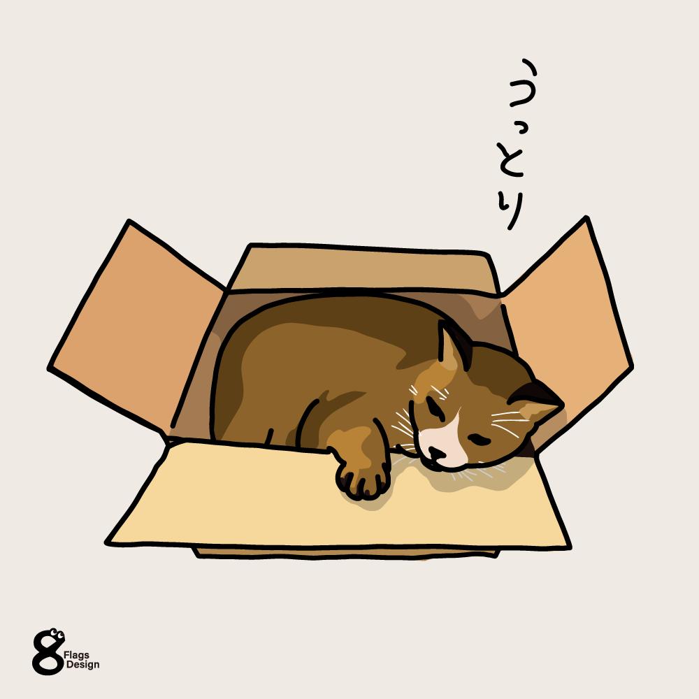 箱ネコのキャッチ画像