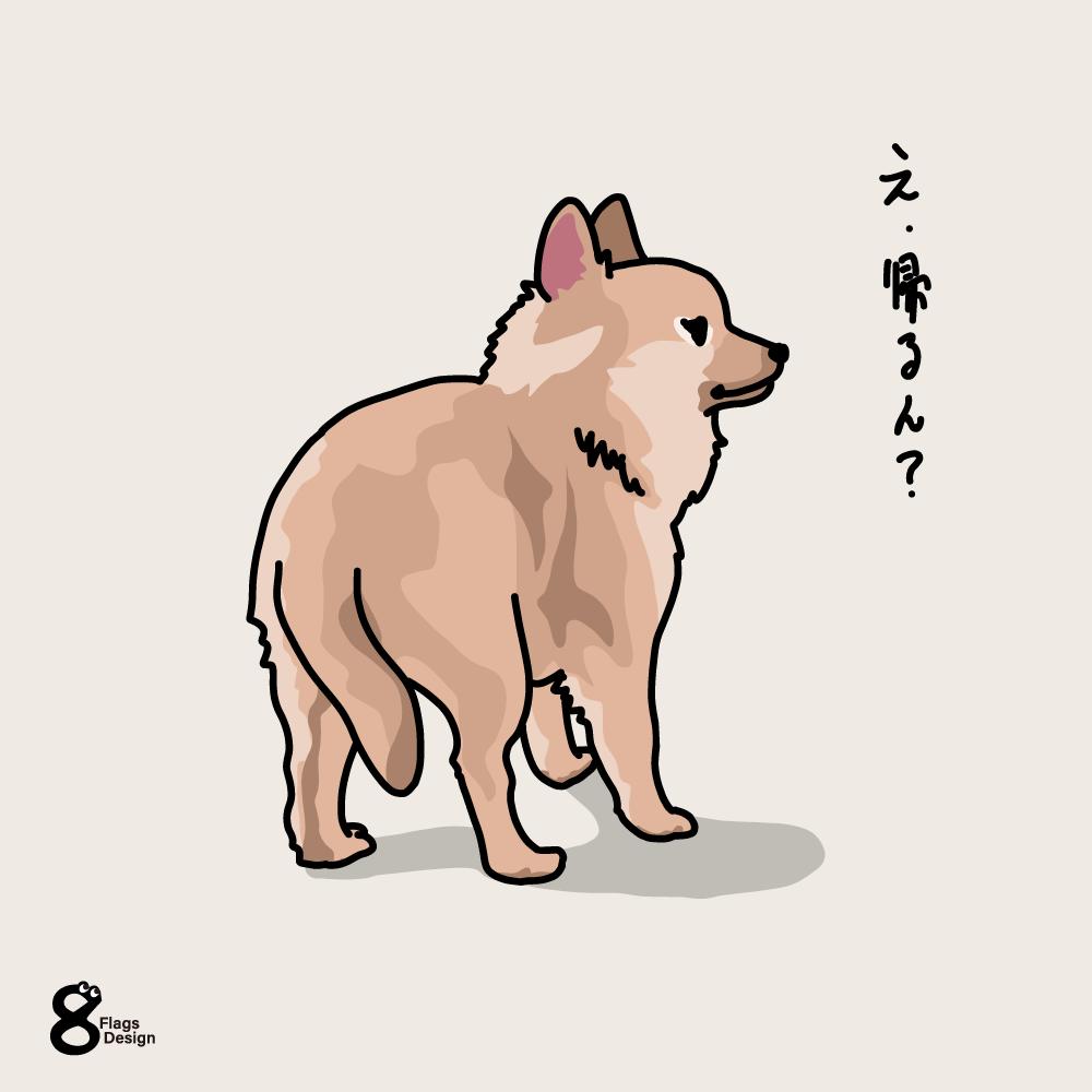 帰りたくない犬のキャッチ画像
