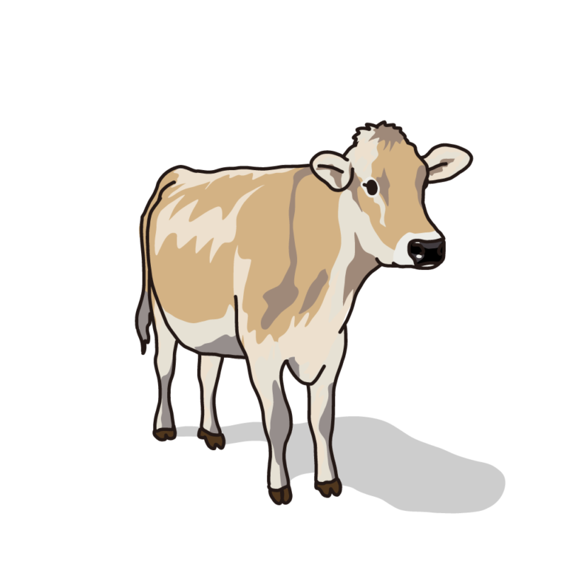 ジャージー牛サンド