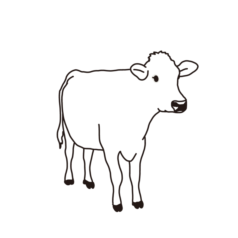 ジャージー牛ライン