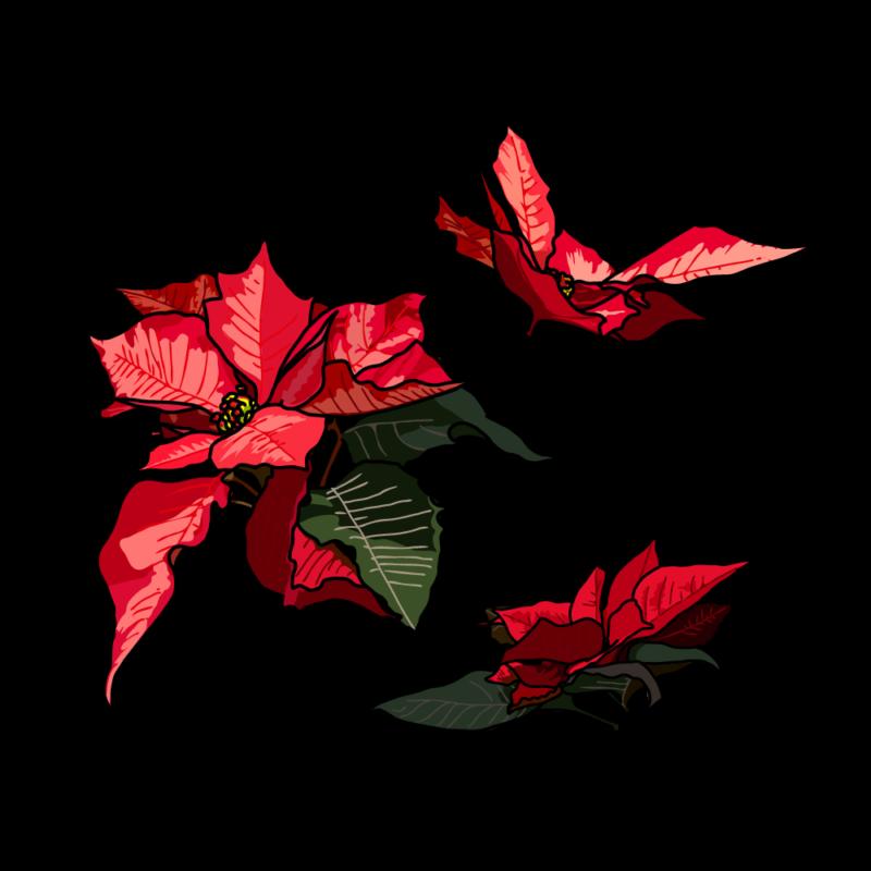 ポインセチア(バラ3つ)赤