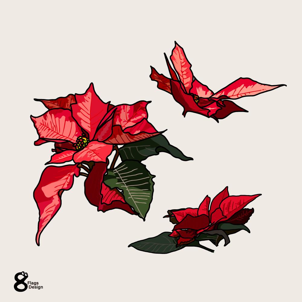 ポインセチア(バラ3つ)のキャッチ画像