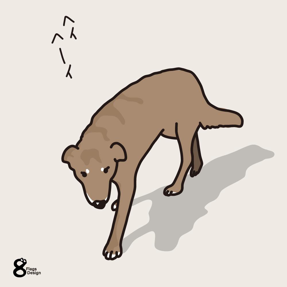 見回り中の犬のキャッチ画像