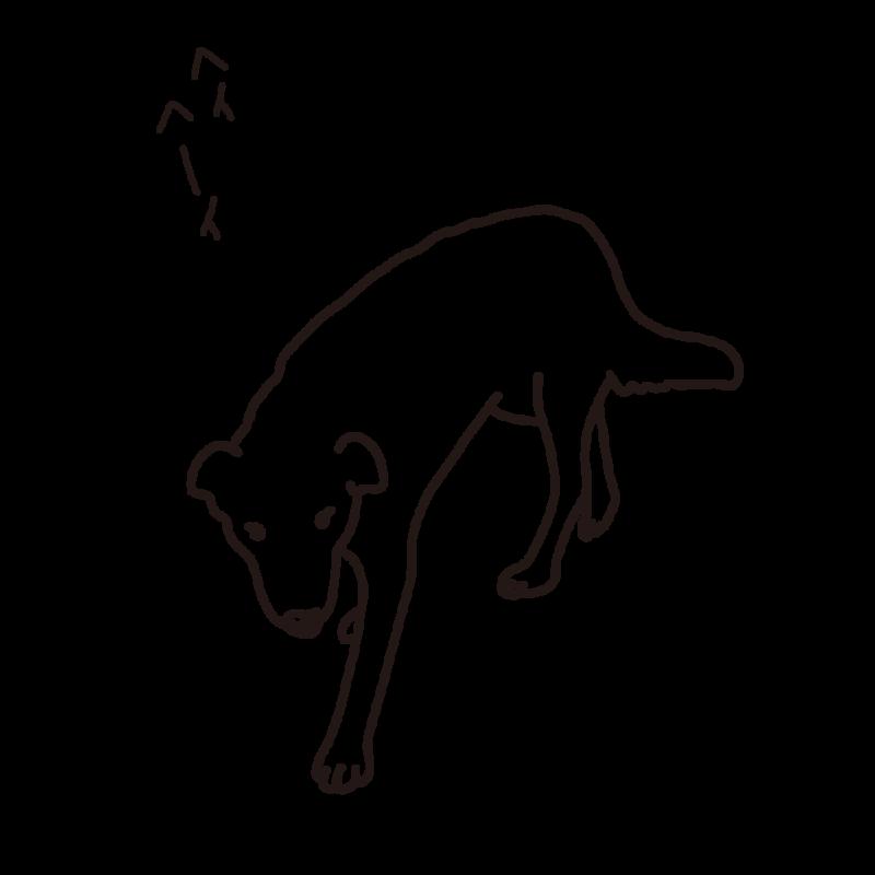 見回り中の犬ライン