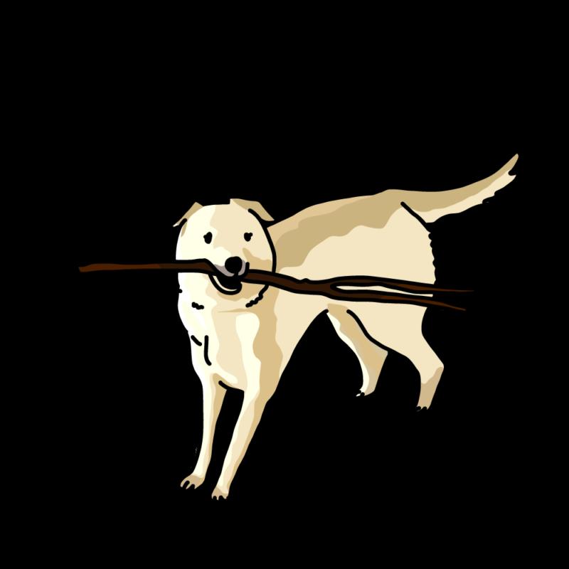 棒っ切れを持っている犬クリーム