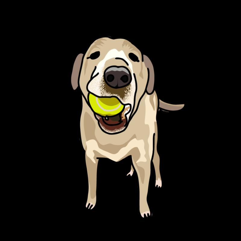 ボールで遊びたい犬クリーム