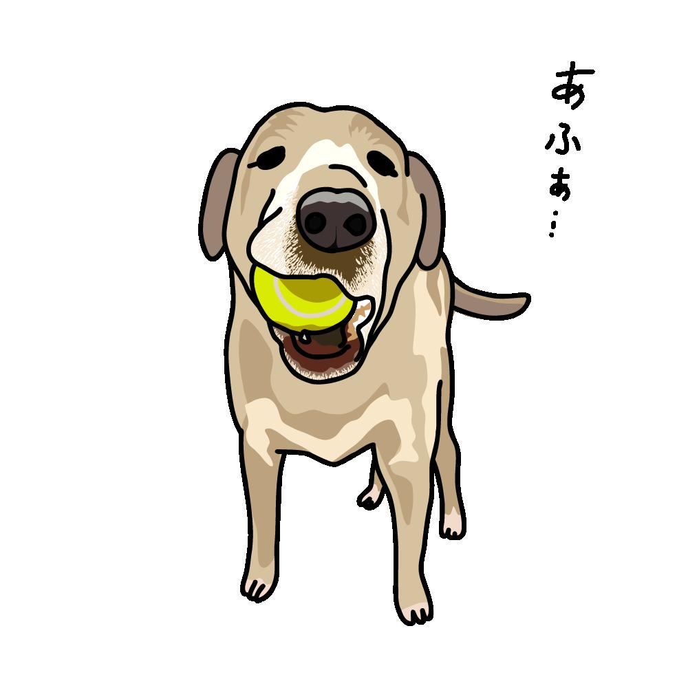 ボールで遊びたい犬のキャッチ画像