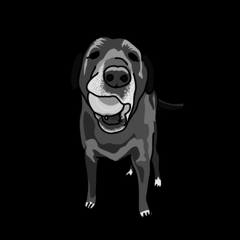 ボールで遊びたい犬モノクロ