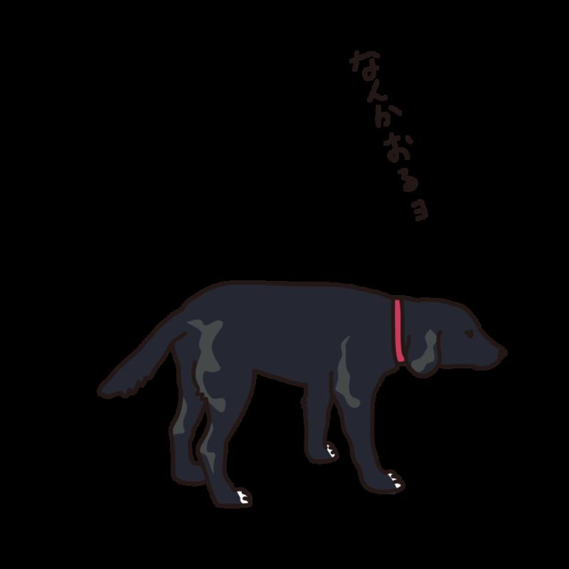 散歩途中の犬黒