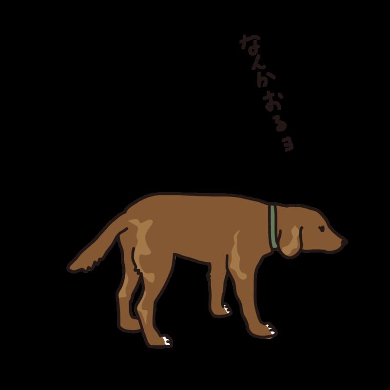 散歩途中の犬茶