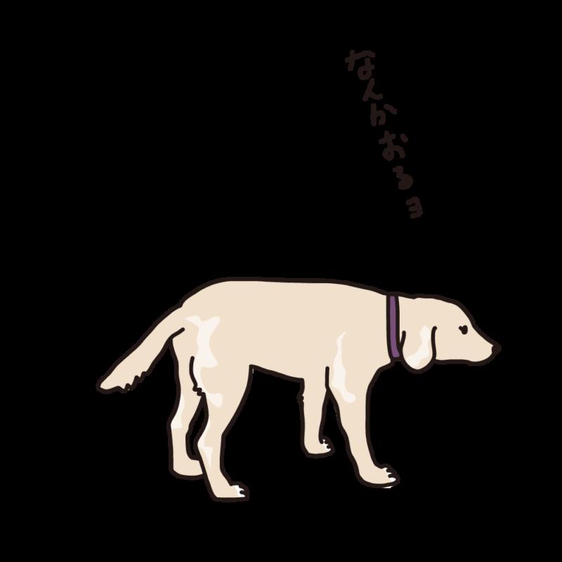 散歩途中の犬クリーム