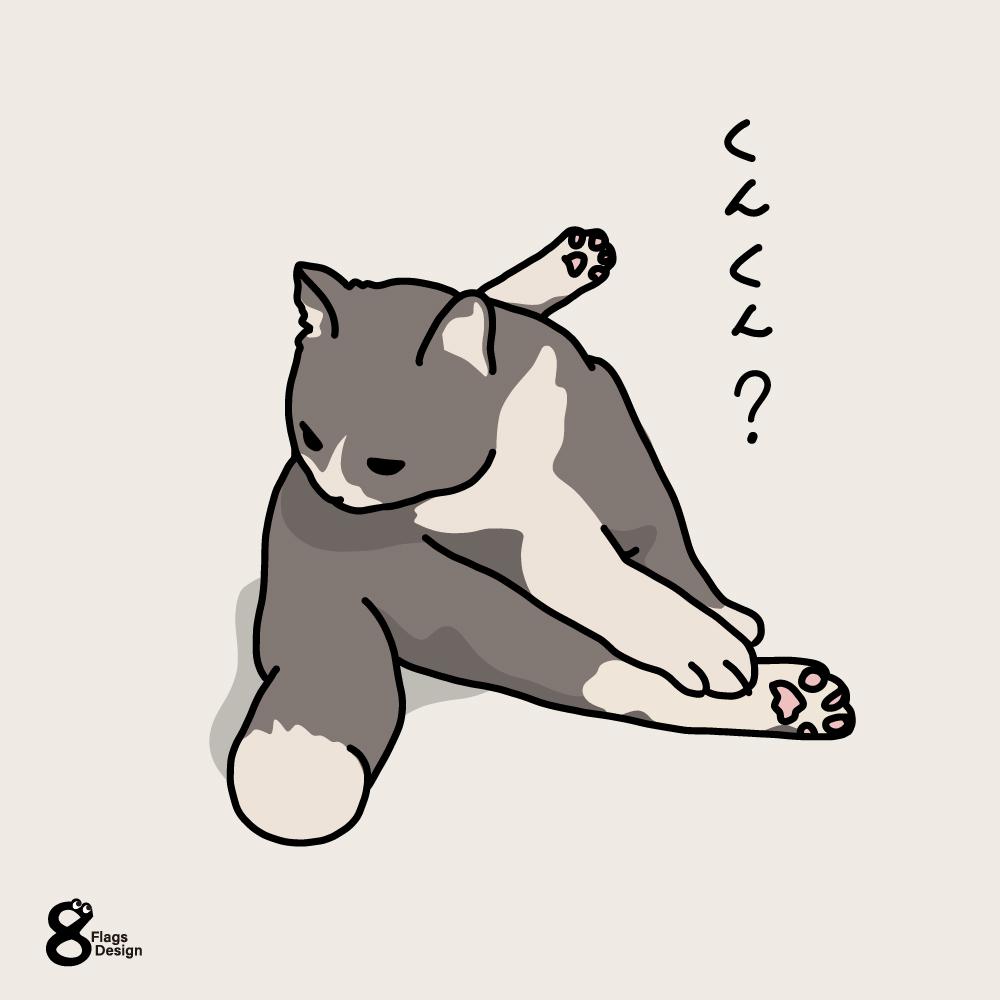 巾着座りのネコのキャッチ画像