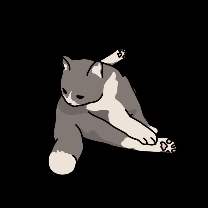 巾着座りのネコグレー