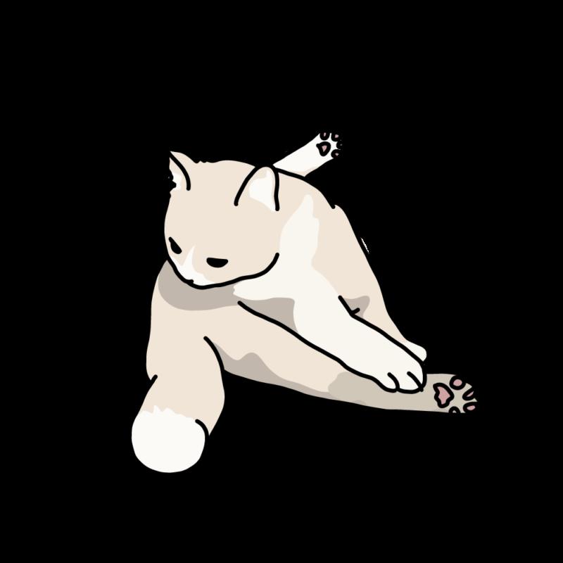 巾着座りのネコミルク