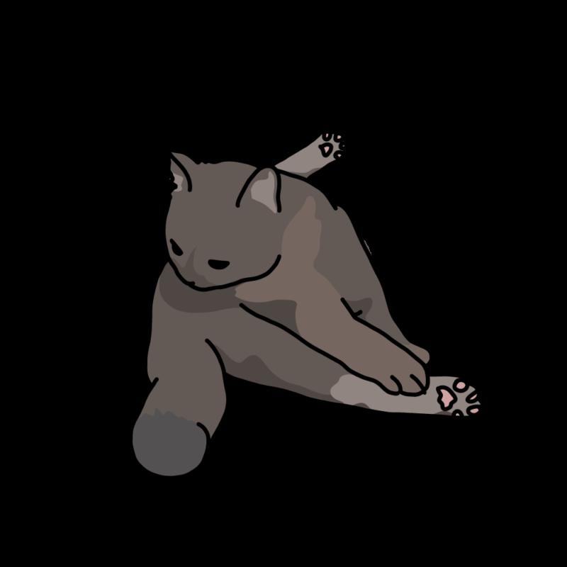 巾着座りのネコ黒