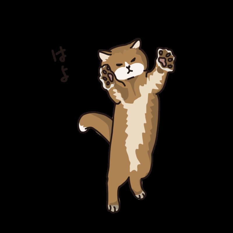 抱っこをねだるネコ赤