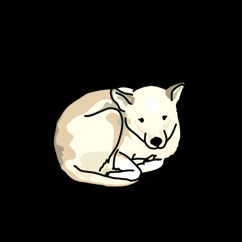さむさむ犬白