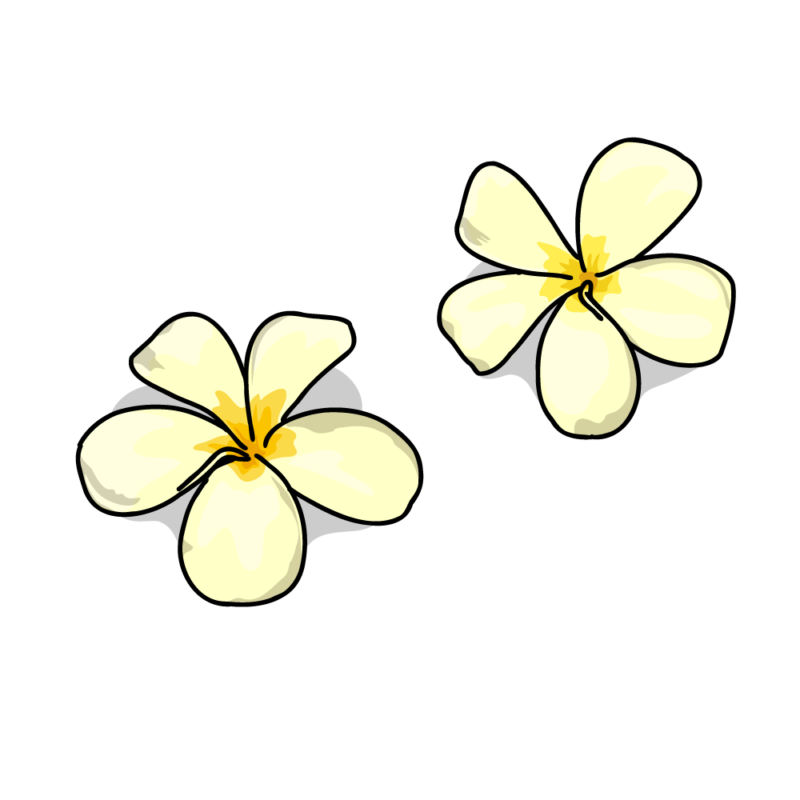 プルメリア黄色