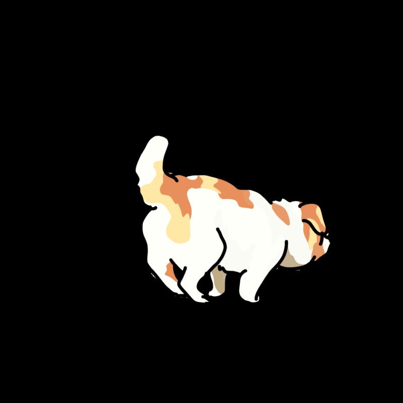 小走りするムク犬ぶち