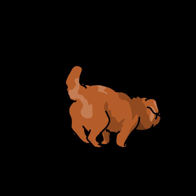 小走りするムク犬赤