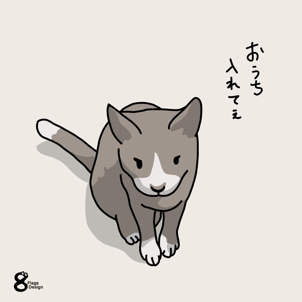 入れて欲しいネコのキャッチ画像
