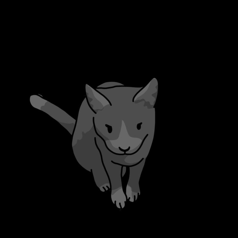 入れて欲しいネコ黒