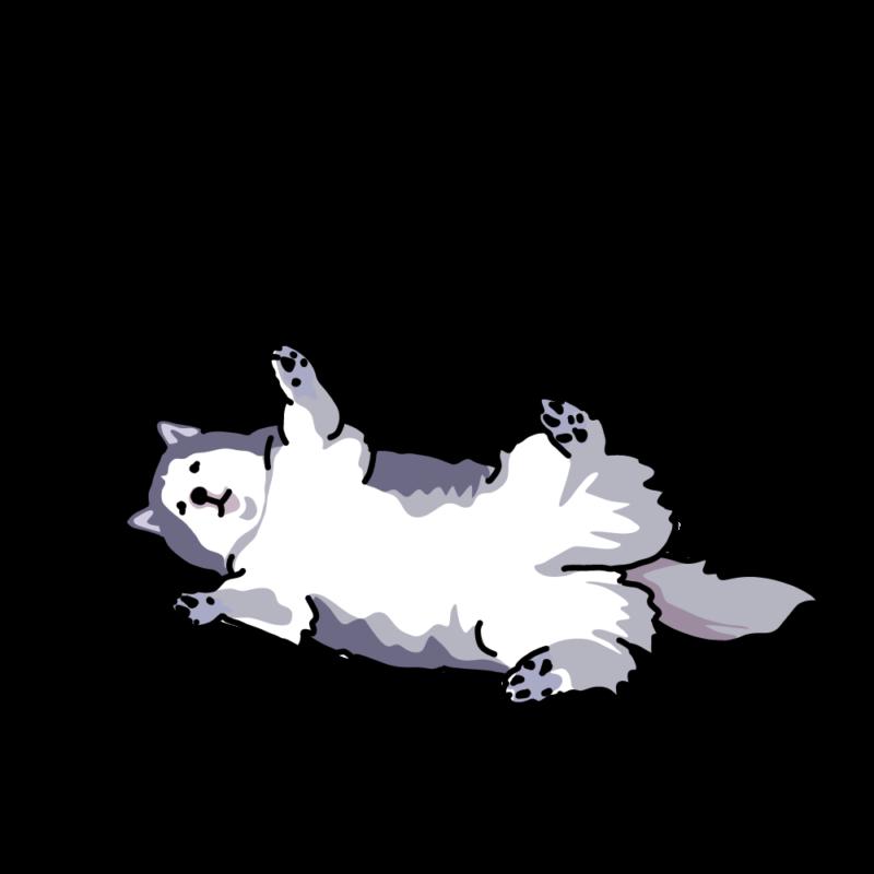 ばんざいハスキー犬シルバー