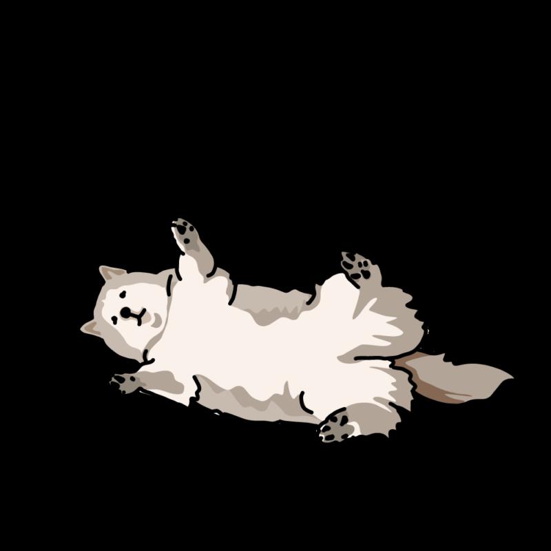 ばんざいハスキー犬スモーク