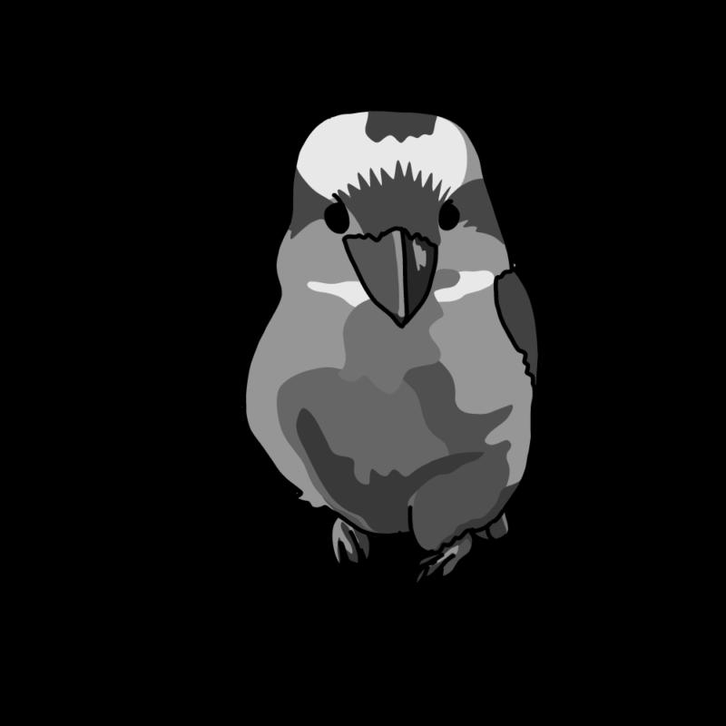 笑う鳥ちゃん(ワライカワセミ)モノクロ