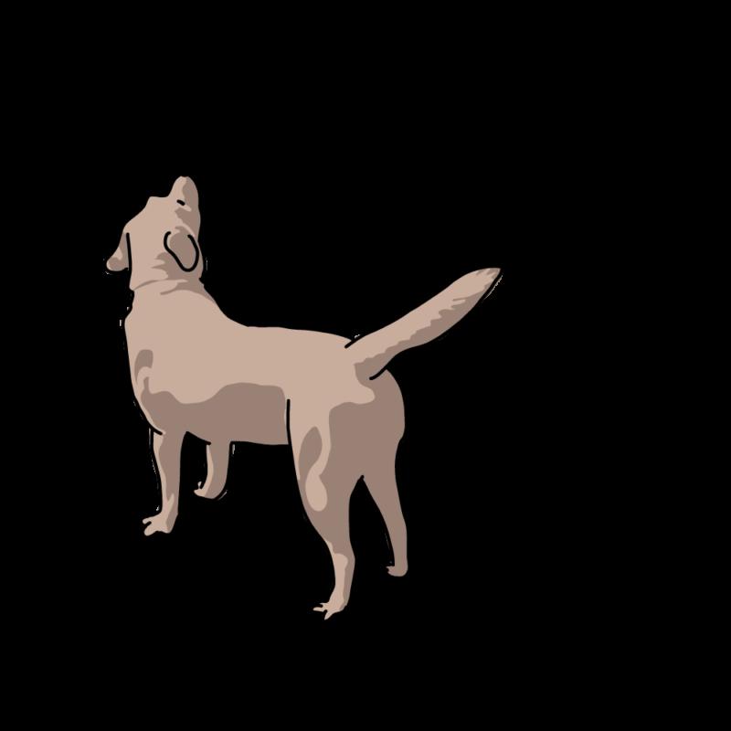 心細くなっている犬クリーム