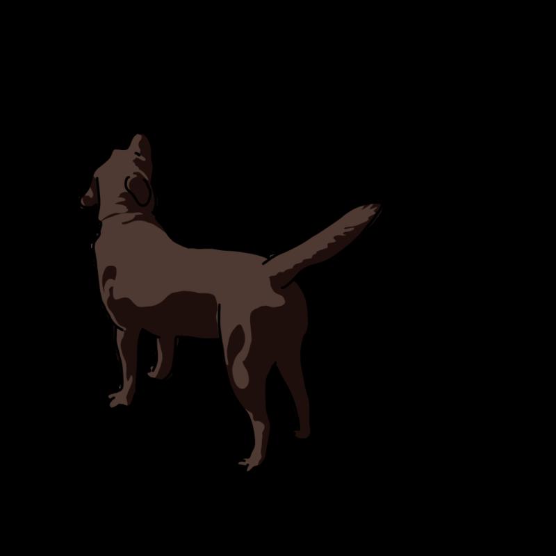 心細くなっている犬黒