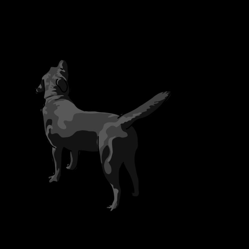 心細くなっている犬モノクロ