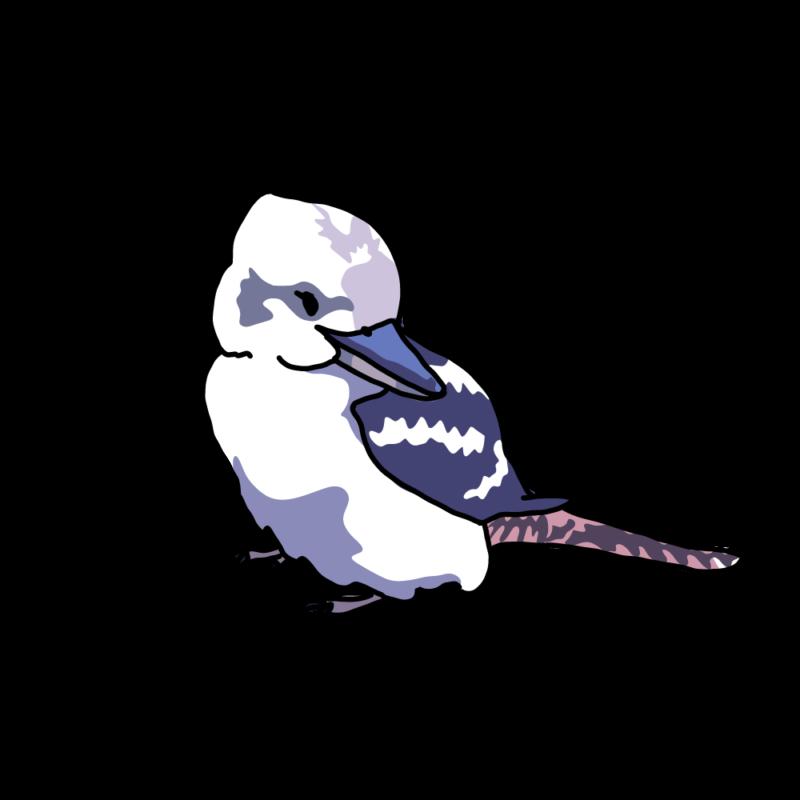 振り向くワライカワセミブルー