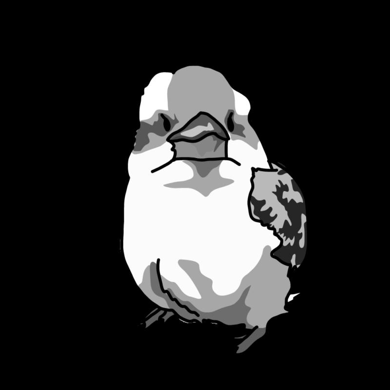 激オコのワライカワセミモノクロ