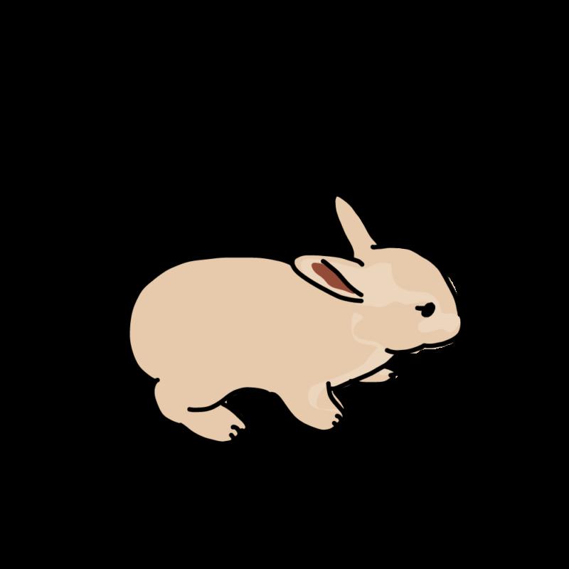 んふんふウサギモカ