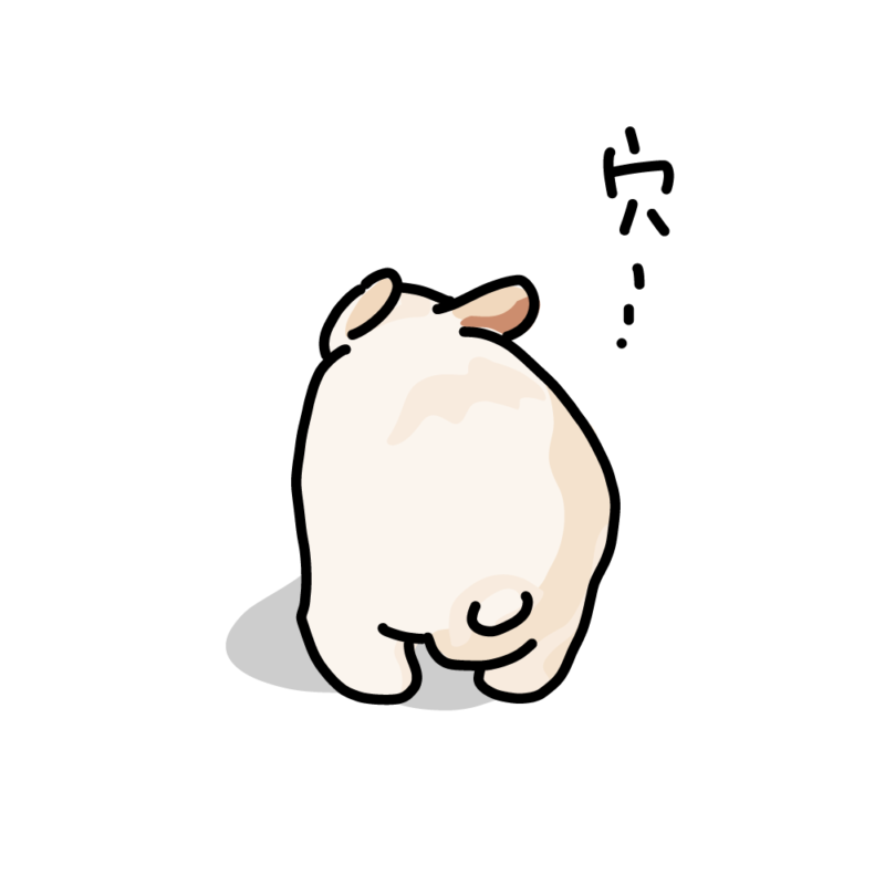 穴を探すウサギ白