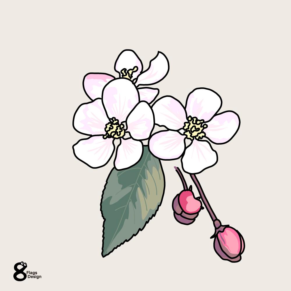 桜のキャッチ画像
