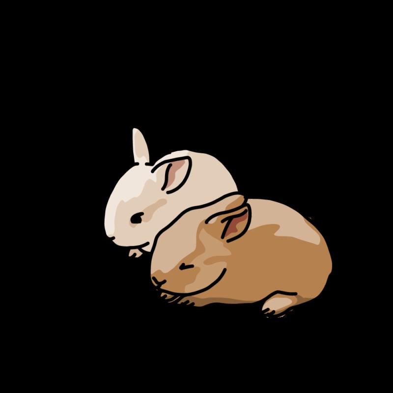 ぬくもるウサギ砂