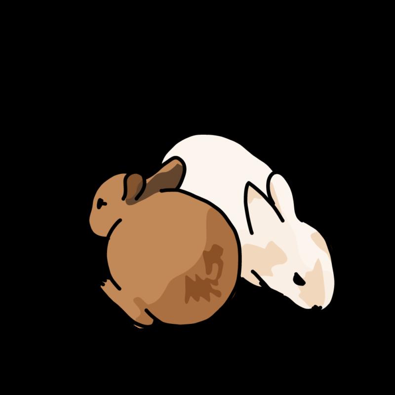 温まるウサギ2茶白