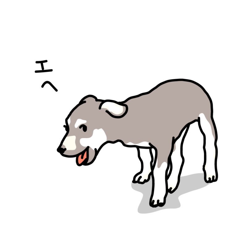 ウキウキな仔犬グレー