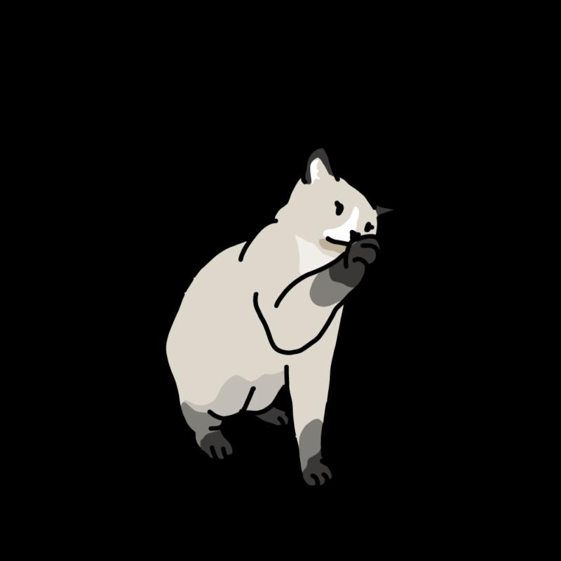 プーだよ(ネコ)ハチワレ